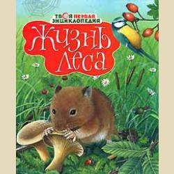 Твоя первая энциклопедия  Жизнь леса