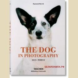 The Dog in Photography  1839-Today Bibliotheca Universalis / Фотоснимки собак с 1839 года до наших дней